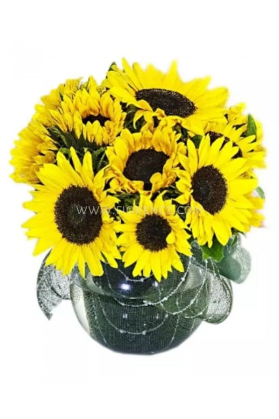 Sunflowers Special