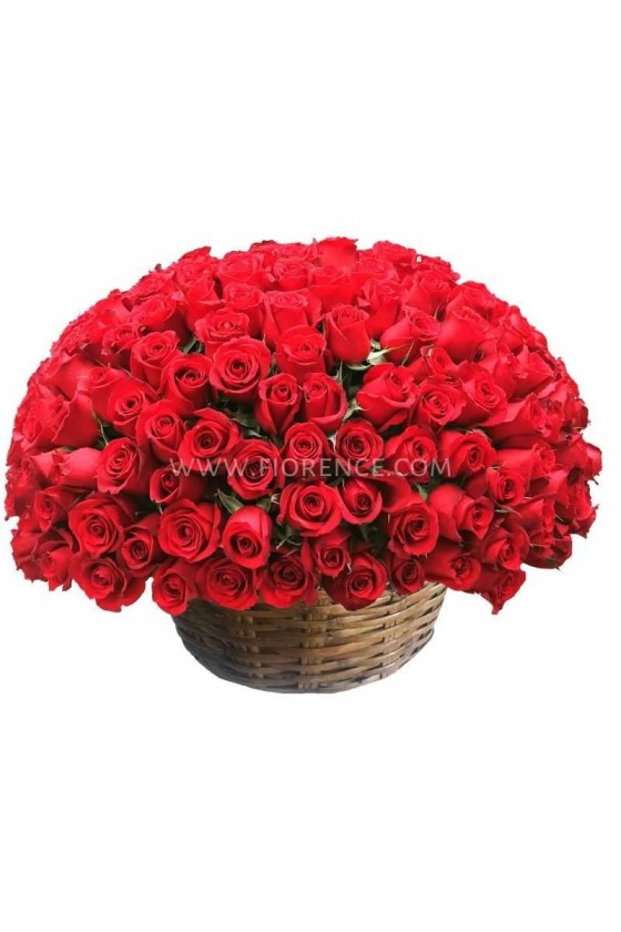 Incredible 100 Roses Arrangement