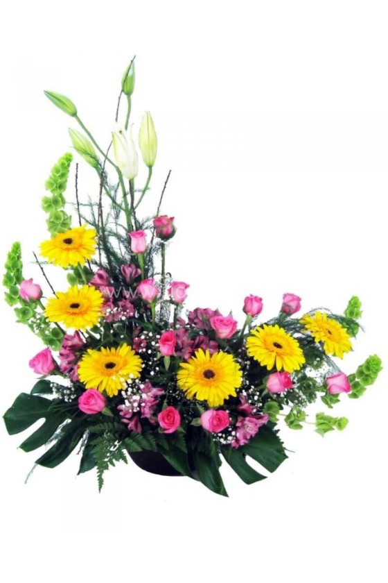 Flowers Flamboyance Design