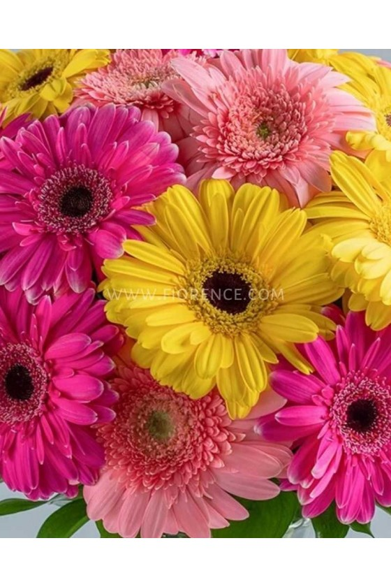 Gerberas Lover's Bouquet