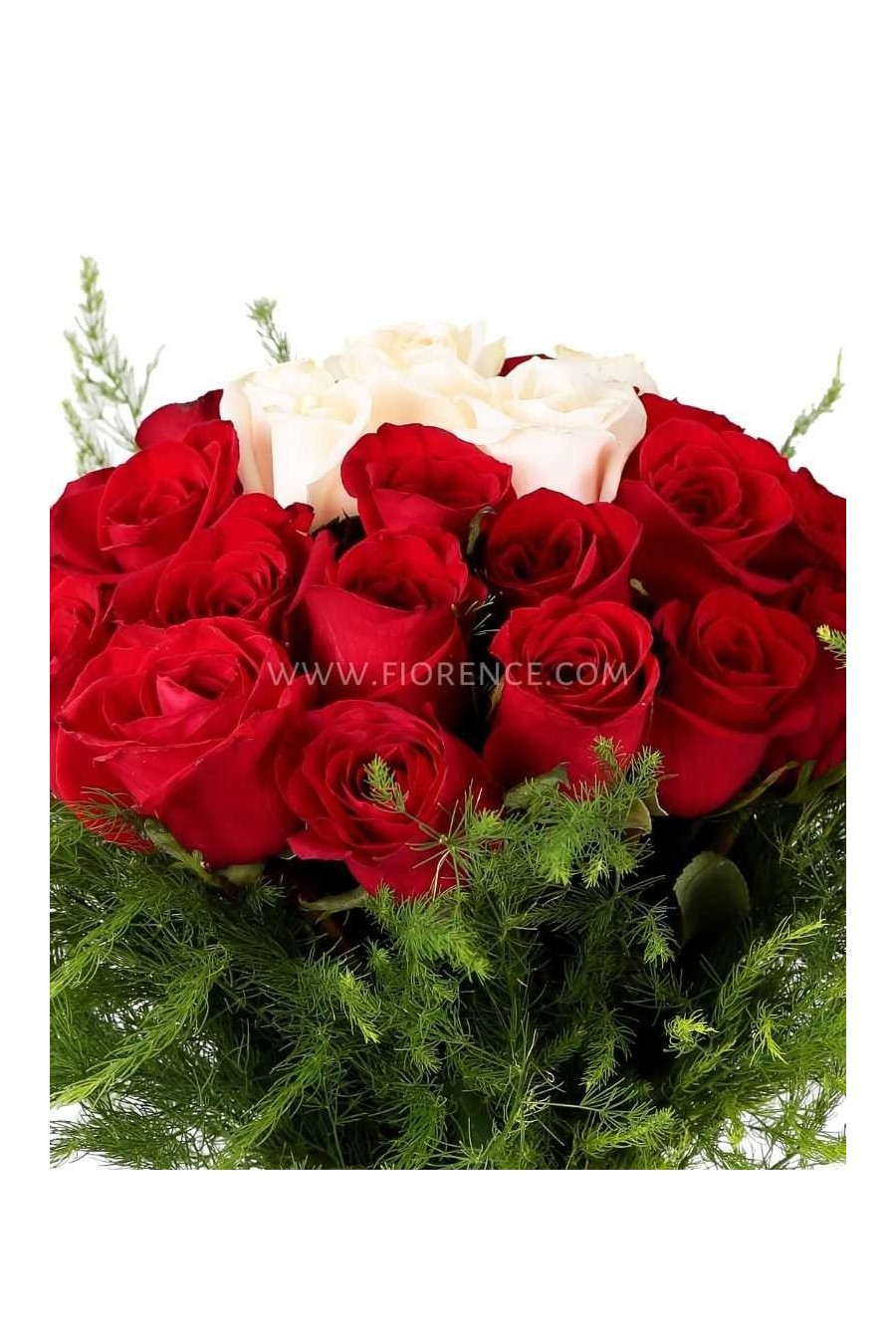 Passional Roses